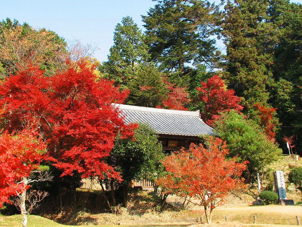 壁紙紅葉・大谷山伽耶院の紅葉 ...