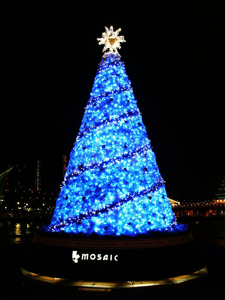 クリスマスツリーの画像 p1_23