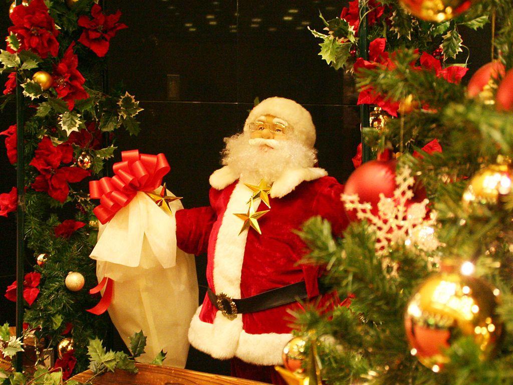 クリスマスツリーの画像 p1_5