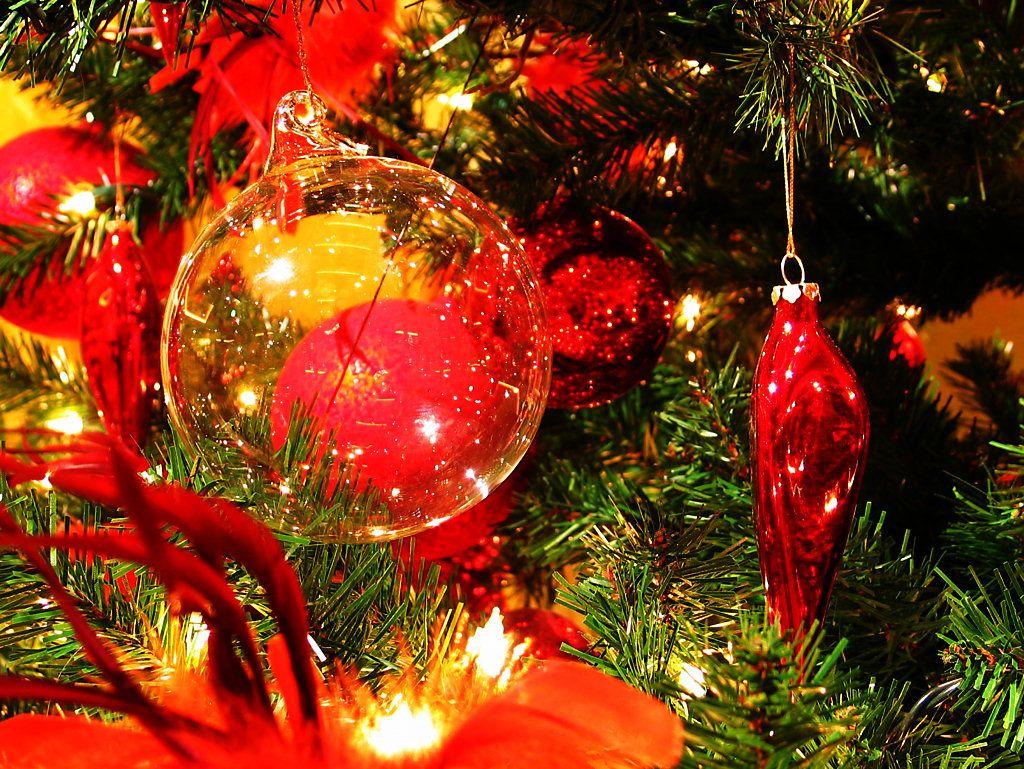 クリスマスの画像 p1_32