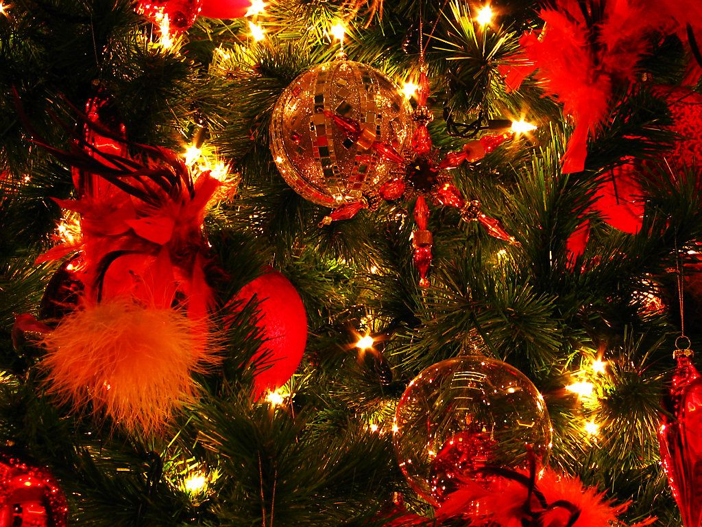 クリスマスの画像 p1_22