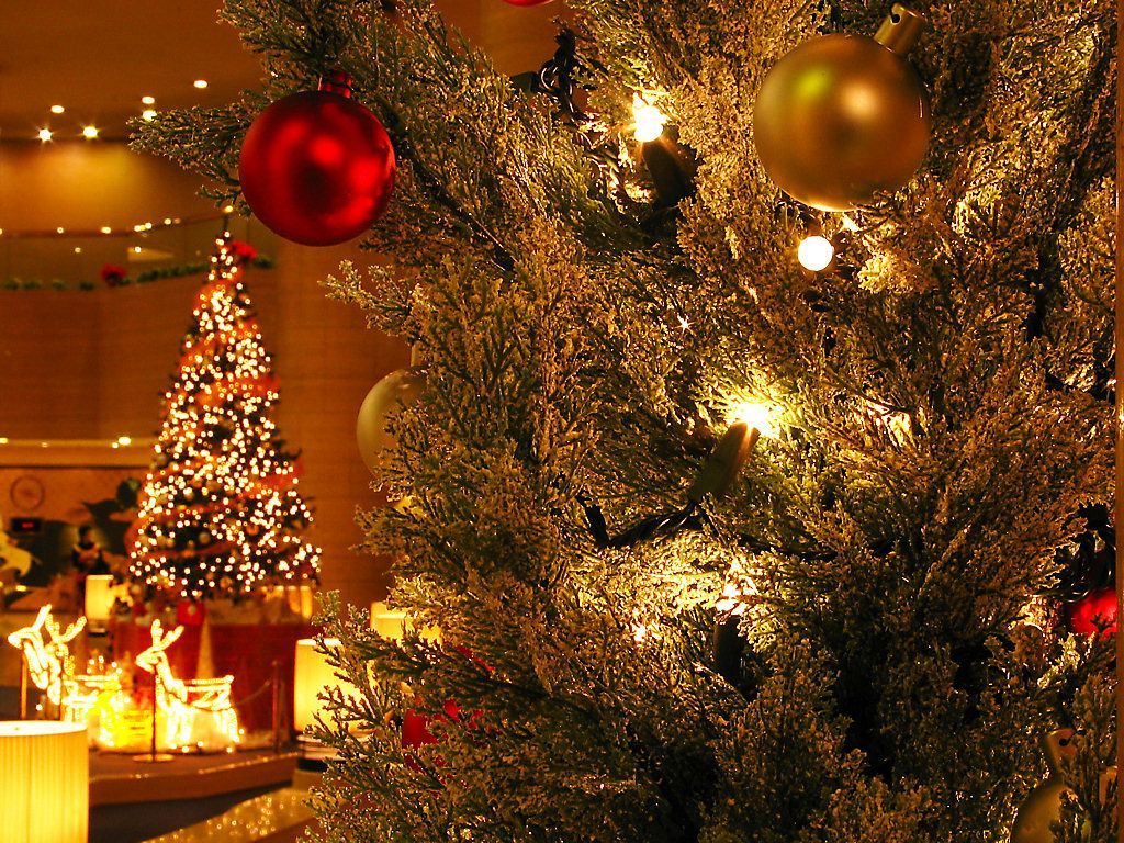 神戸ポートピアホテルクリスマスイルミネーション 壁紙写真集 無料写真素材